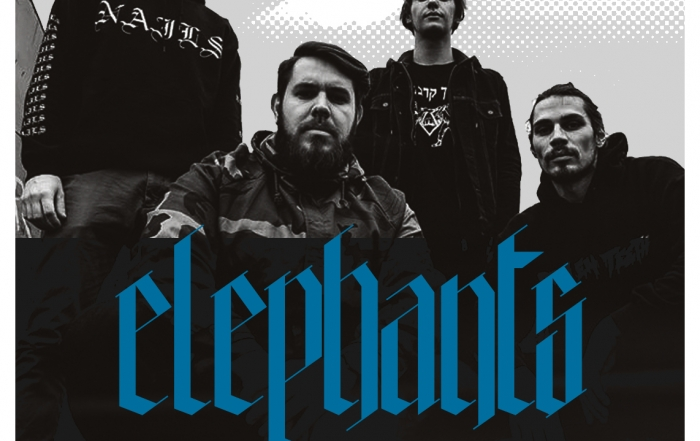 New Signing : ELEPHANTS