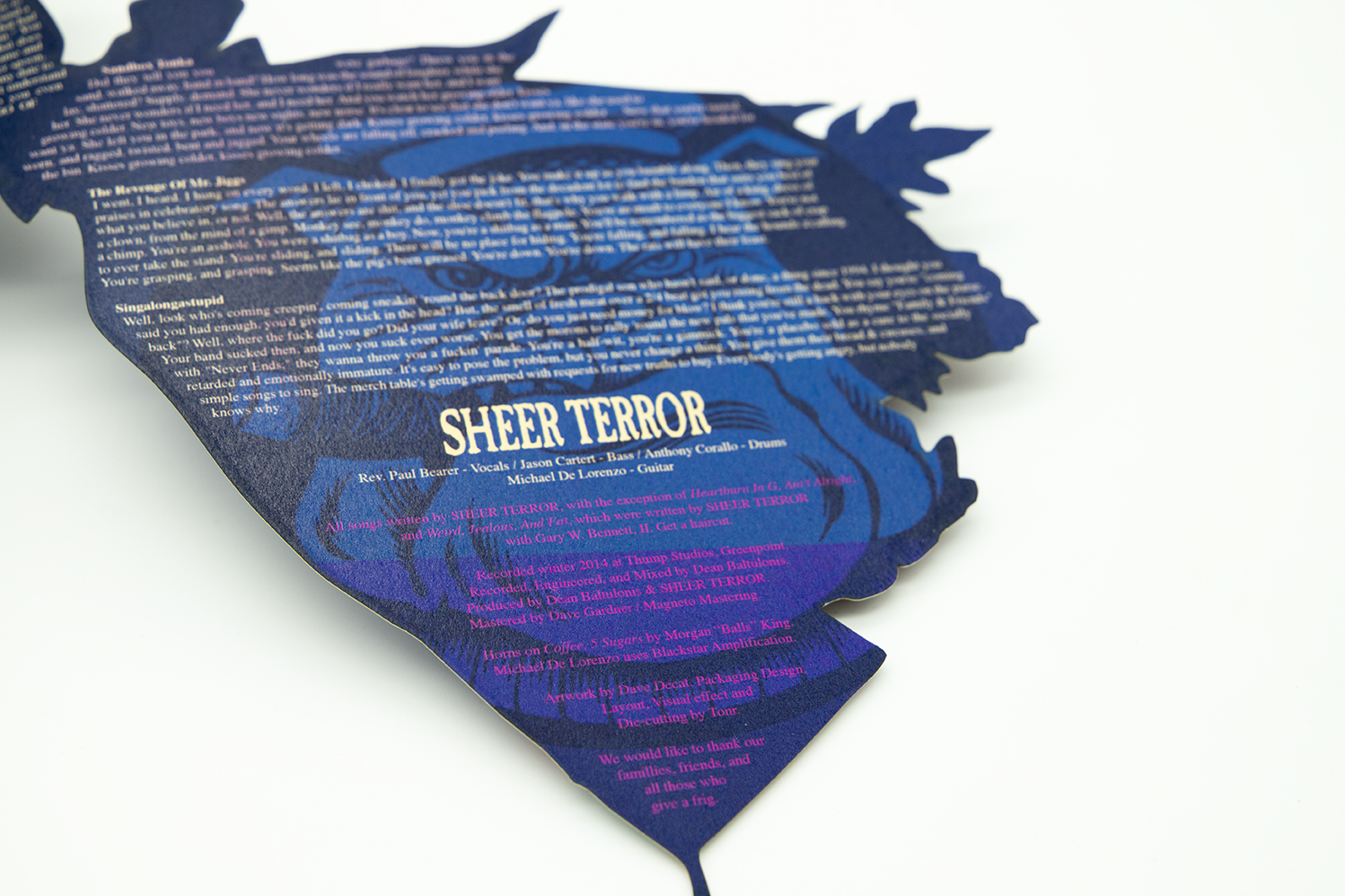 SHEER TERROR Standing Up For Falling Down triple picture disc vinyl